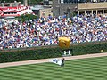 20080808 Navy Seal Parachutes onto Wrigley Field2.jpg