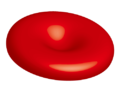 201304 red blood cell.png
