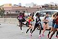 2014 New York City Marathon IMG 1480 (15510229638).jpg
