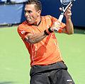 2014 US Open (Tennis) - Tournament - Victor Estrella Burgos (15094486241).jpg