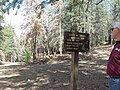 20150803 Prescott NF, AZ R3 Spruce Mountain Lookout Tower & Picnic Site 005 (US Forest Service Photo) (48655391042).jpg