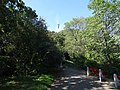 20151003 082 Budapest - Gellért Hill (21733573719).jpg