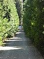 2017-06-20 Giardino di Boboli 35.jpg