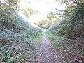 2018-11-11 Paston Way, North walsham to Knapton section, Norfolk (1).JPG
