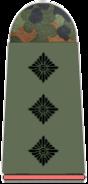 231-Hauptmann