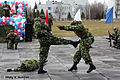 27th Independent Sevastopol Guards Motor Rifle Brigade (182-20).jpg