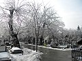 31. Bucuresti, Romania. Din Ciclul BUCURESTIUL SUB ASEDIUL FRIGULUI, Ianuarie 2019. Cimitirul Bellu Catolic. (8).jpg