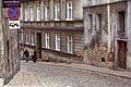 3929viki Kłodzko. Foto Barbara Maliszewska.jpg