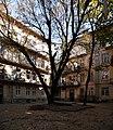 3 Leontovycha Street, Lviv (05).jpg