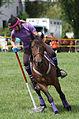 4ème manche du championnat suisse de Pony games 2013 - 25082013 - Laconnex 53.jpg