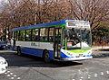 582 Ramal Pellegrini - 2.jpg