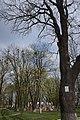 68-230-5017 Летичівська.jpg