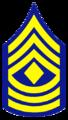 AK - Trooper First Sergeant.png