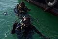 ATFP dive 130205-N-RE144-143.jpg