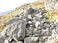 A boulder field of rocks of the Snowdon volcanic series - geograph.org.uk - 275587.jpg