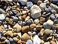 A closer look at Pebbles (164988982).jpg