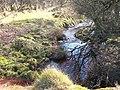 A minor tributary of Afon Dwyfach - geograph.org.uk - 1766380.jpg