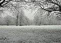 A snowy Pearson Park, Hull - geograph.org.uk - 786430.jpg