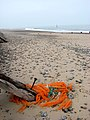 A tangle of ropes and fishing nets - geograph.org.uk - 1034068.jpg