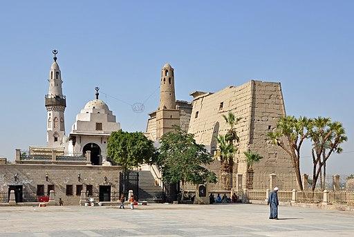 Abu el-Haggag R01