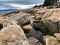 Acadia National Park (0a019bb1-ff42-4aa2-a8d0-387f18083f67).jpg
