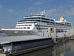 Adonia at Liverpool Cruise Terminal (5).JPG