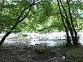 Afon Ceiriog - geograph.org.uk - 568418.jpg