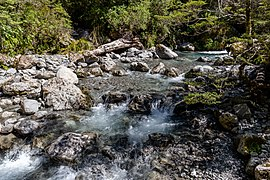 Agility Creek, Canterbury, New Zealand 03.jpg