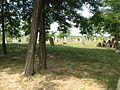 Alistál zsidó temető.JPG