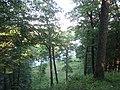 Alytus, Lithuania - panoramio (10).jpg