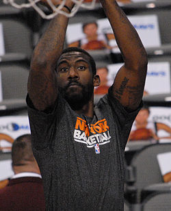 Image illustrative de l'article Amar'e Stoudemire