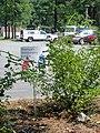 America's Anniversary Garden - panoramio.jpg