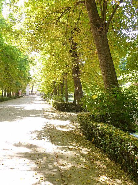 File aranjuez real sitio jard n del pr ncipe wikimedia commons - Jardin del principe aranjuez ...