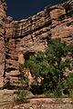Aravaipa Canyon Wilderness (9415065712).jpg