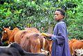 Arba Minch, Ethiopia (8183481535).jpg