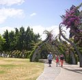 Arbour-at-South-Bank-Parklands.jpg