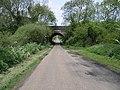 Arched Bridge - geograph.org.uk - 175213.jpg