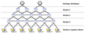 Architecture NTP fr.png