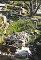 Atenas, Ágora romana 4.jpg