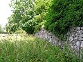 Auchans Castle Walled garden.JPG