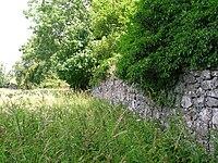 Auchans Castle Walled garden