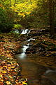 Autumn-creek-waterfalls-fall-foliage-leaves - West Virginia - ForestWander.jpg