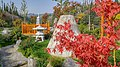 Autumn season in Butanic Garden فصل پاییز در باغ بوتانیکال تفلیس 43.jpg