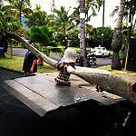 B-17 prop found off Sandy Beach, -oahu. Headed to Hangar 79 -pilot -aviation (9018573019).jpg