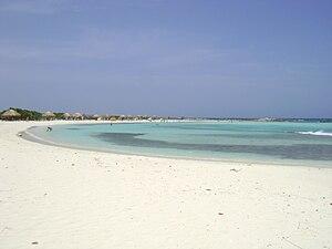 Nude beach in san diego - 4 4