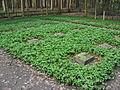 Bad Lippspringe-Ehrenfriedhof-5.jpg