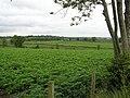 Ballydonnelly Townland - geograph.org.uk - 877041.jpg