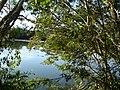 Balsa - panoramio.jpg