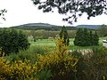 Banchory golf course - geograph.org.uk - 802633.jpg