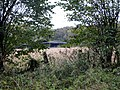 Barns beyond Rag Copse - Nov 2012 - panoramio.jpg
